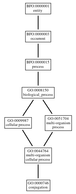 Graph of GO:0000746