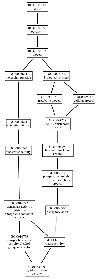 Graph of GO:0008478