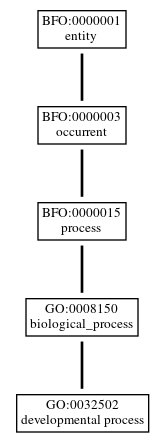Graph of GO:0032502