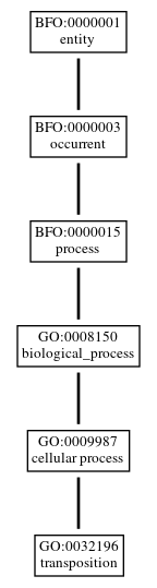 Graph of GO:0032196