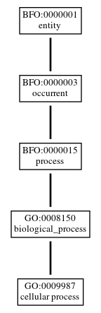 Graph of GO:0009987