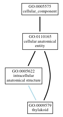Graph of GO:0009579