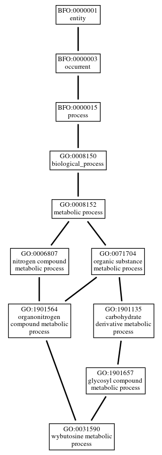 Graph of GO:0031590