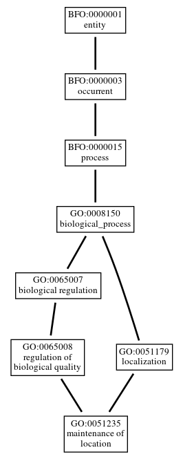 Graph of GO:0051235