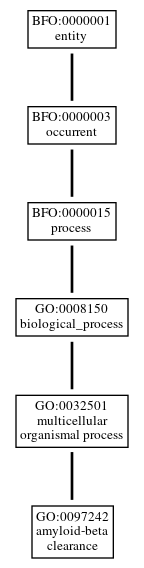 Graph of GO:0097242