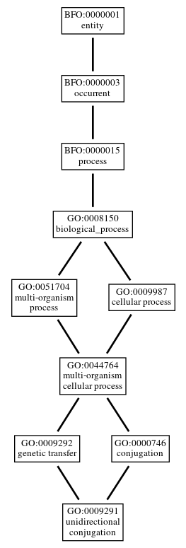 Graph of GO:0009291