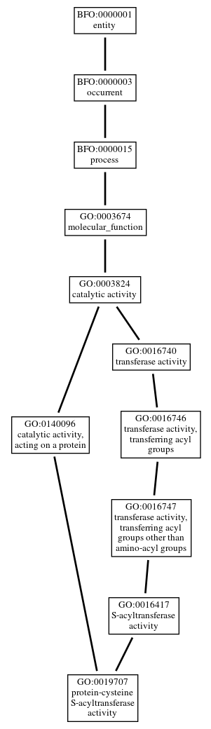 Graph of GO:0019707