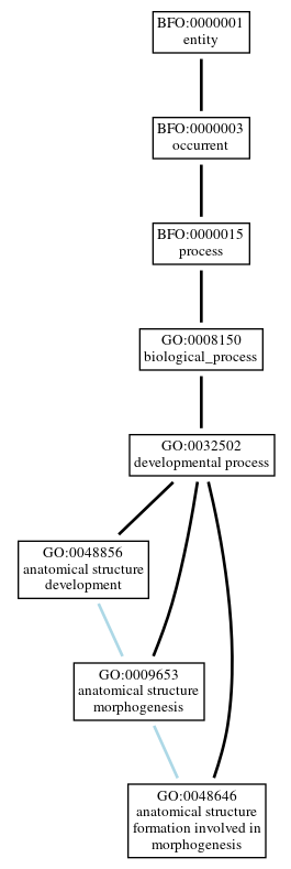 Graph of GO:0048646