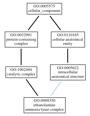Graph of GO:0009350