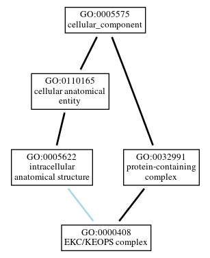 Graph of GO:0000408