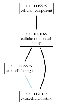 Graph of GO:0031012
