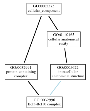Graph of GO:0032996