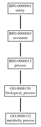 Graph of GO:0008152