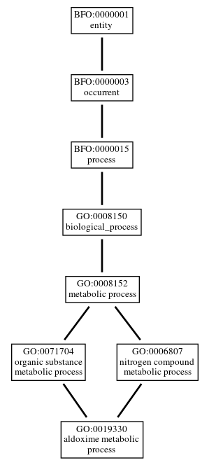 Graph of GO:0019330