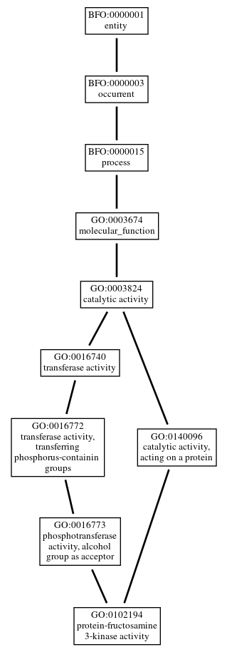Graph of GO:0102194