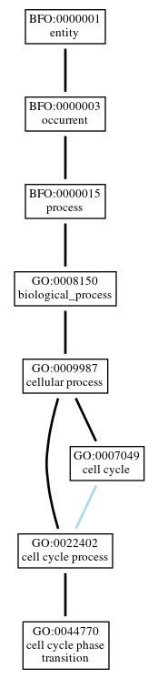 Graph of GO:0044770