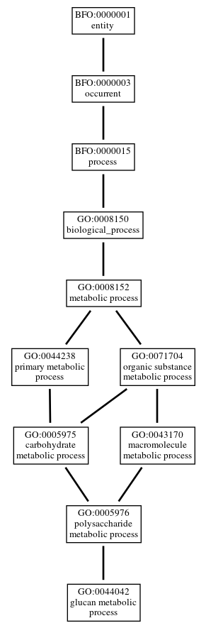 Graph of GO:0044042