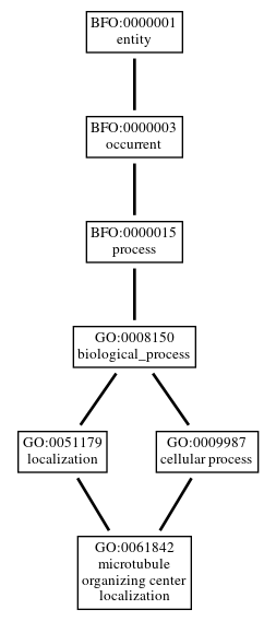 Graph of GO:0061842