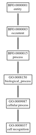 Graph of GO:0008037