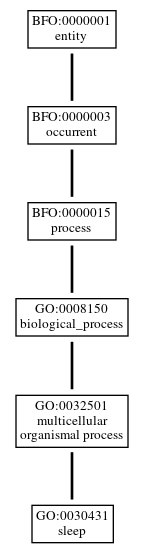 Graph of GO:0030431