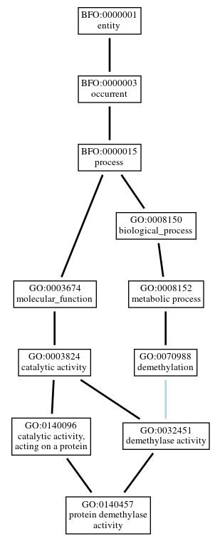 Graph of GO:0140457