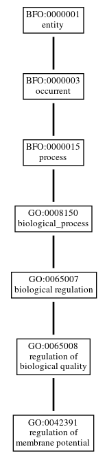 Graph of GO:0042391
