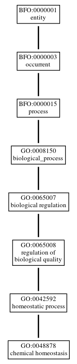 Graph of GO:0048878