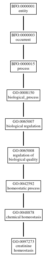 Graph of GO:0097273