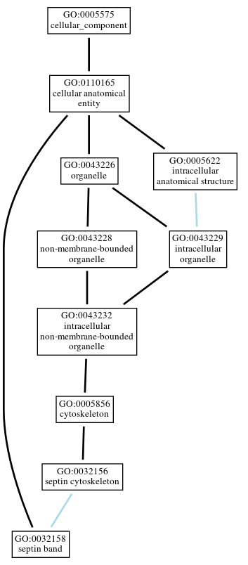 Graph of GO:0032158