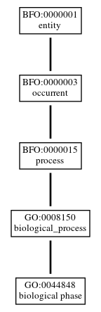 Graph of GO:0044848