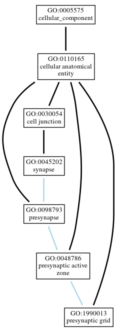 Graph of GO:1990013