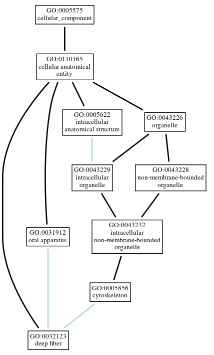 Graph of GO:0032123