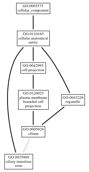 Graph of GO:0035869