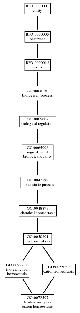 Graph of GO:0072507