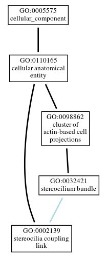 Graph of GO:0002139