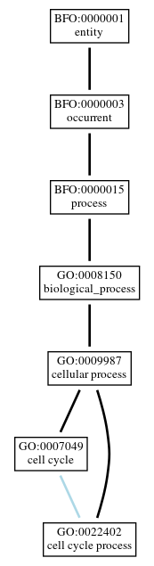 Graph of GO:0022402