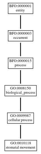 Graph of GO:0010118