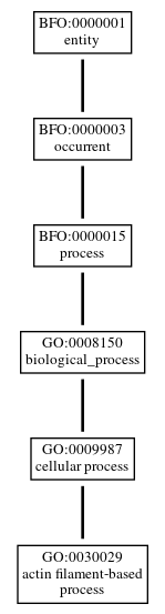 Graph of GO:0030029