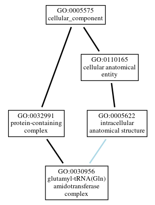 Graph of GO:0030956