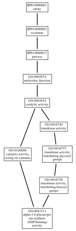 Graph of GO:0047211