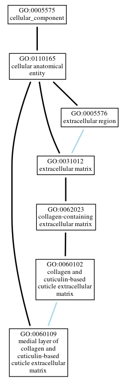 Graph of GO:0060109