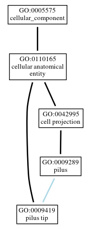 Graph of GO:0009419