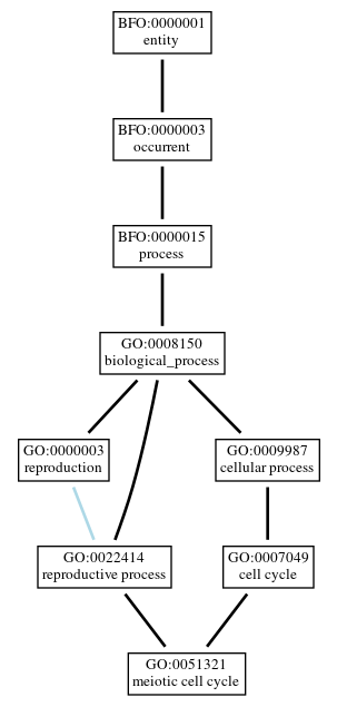 Graph of GO:0051321