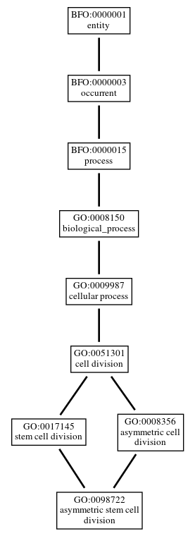 Graph of GO:0098722