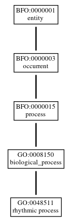 Graph of GO:0048511