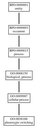 Graph of GO:0036166