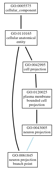 Graph of GO:0061845