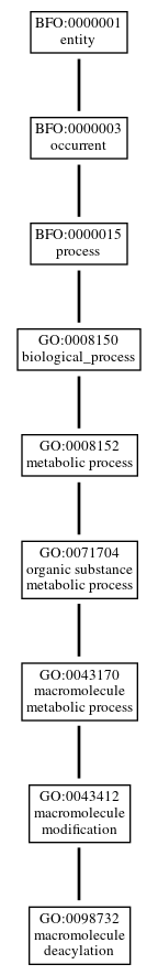 Graph of GO:0098732