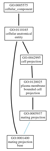 Graph of GO:0001400