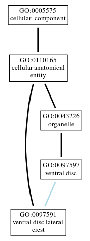 Graph of GO:0097591